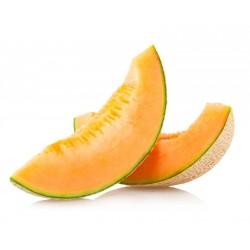 Melon gros FRANCE