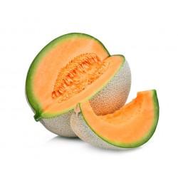 Melon Petit france